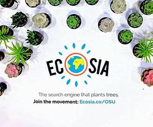 Ecosia: Succulents