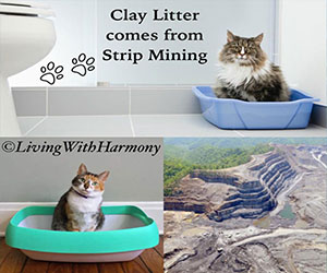 Living With Harmony: Strip Mined Kitty Litter