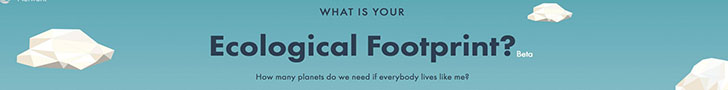 Footprint Calculator:  What is your footprint