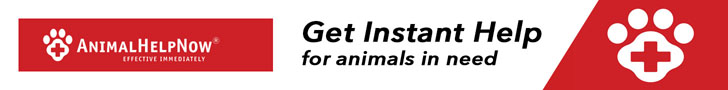 Animal Help Now: Get Help Instantly