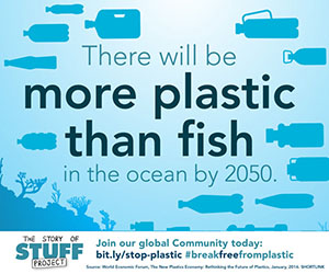The Story of Stuff: More Plastic Than Fish
