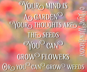 Living With Harmony: Your Mind Is A Garden