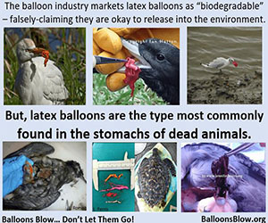 Ballons Blow: Latex Balloons