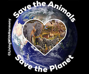 Living With Harmony: Save The Animals Save The Planet