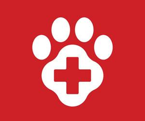 Animal Help Now: Symbol Logo