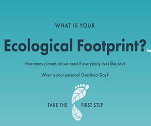 Footprint Calculator:  Take Quiz Gradient