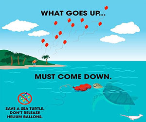 Ballons Blow: What Goes Up